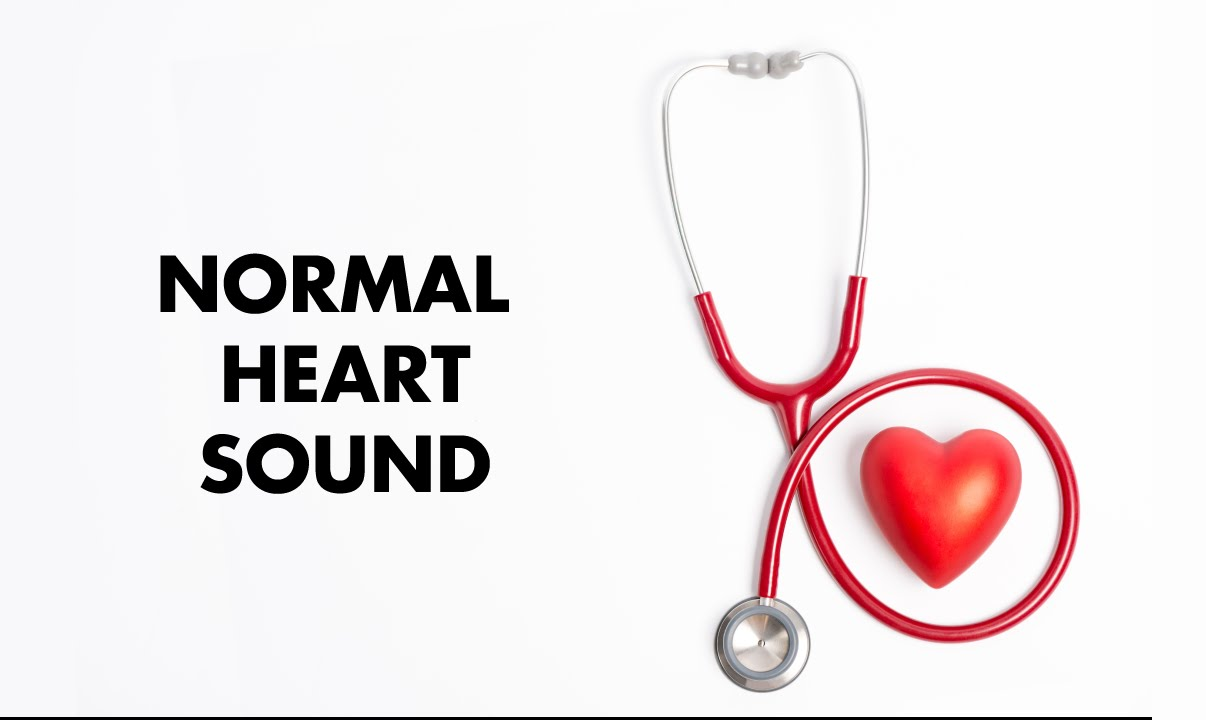 Adult heart sounds